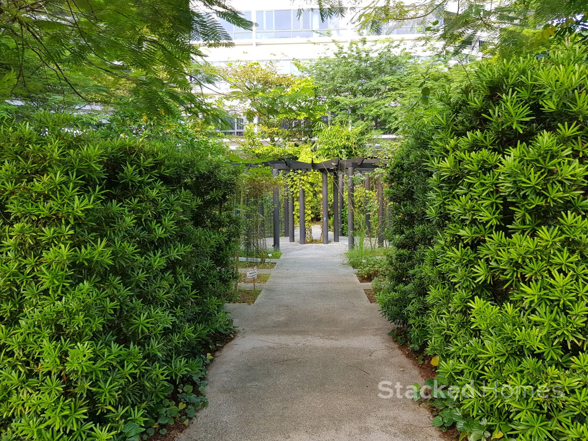 the interlace condo green spaces