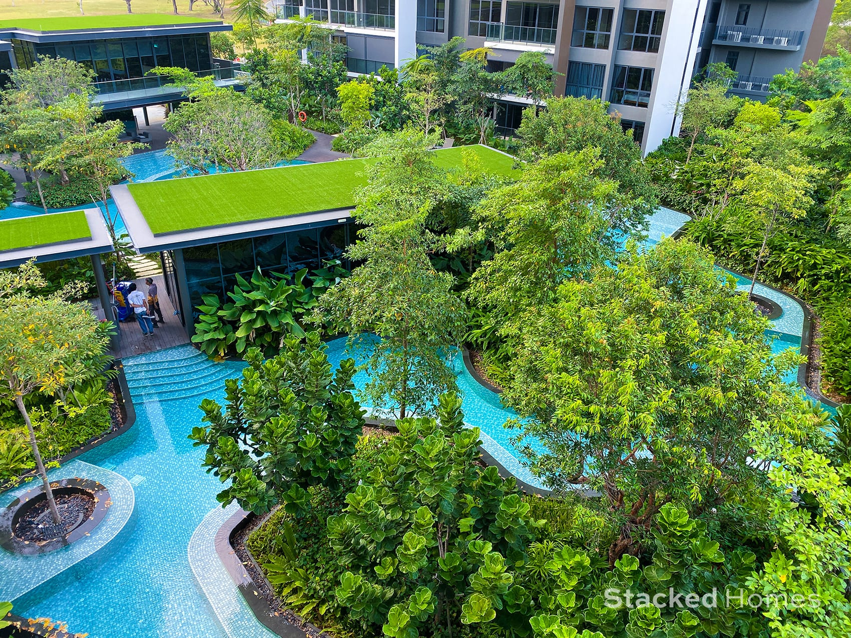 clement canopy swimming pool view