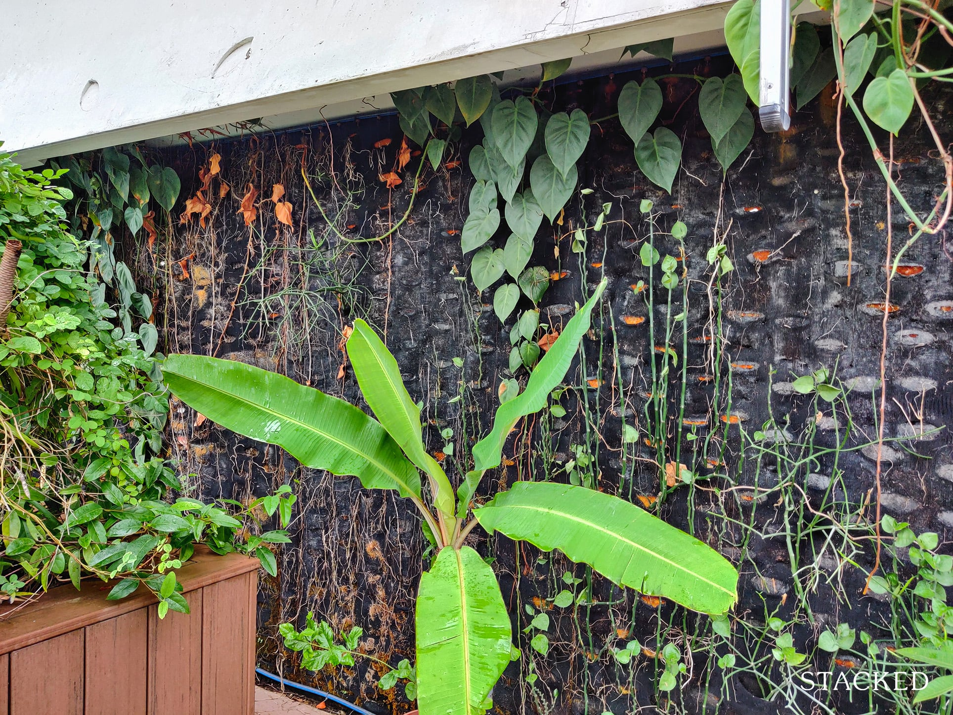 punggol waterway terraces plant wall feature